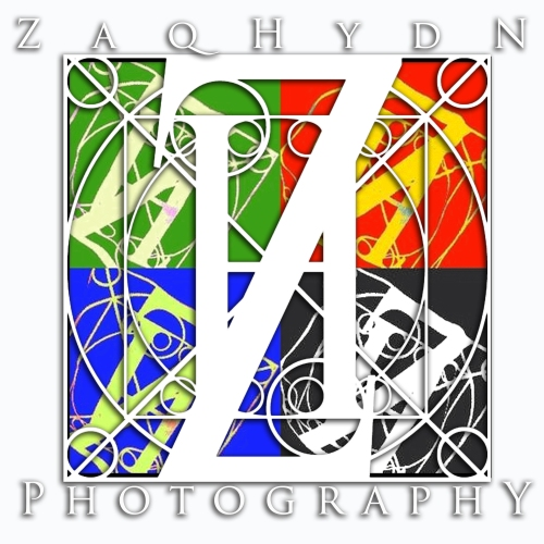 Logo - ZH 20091000